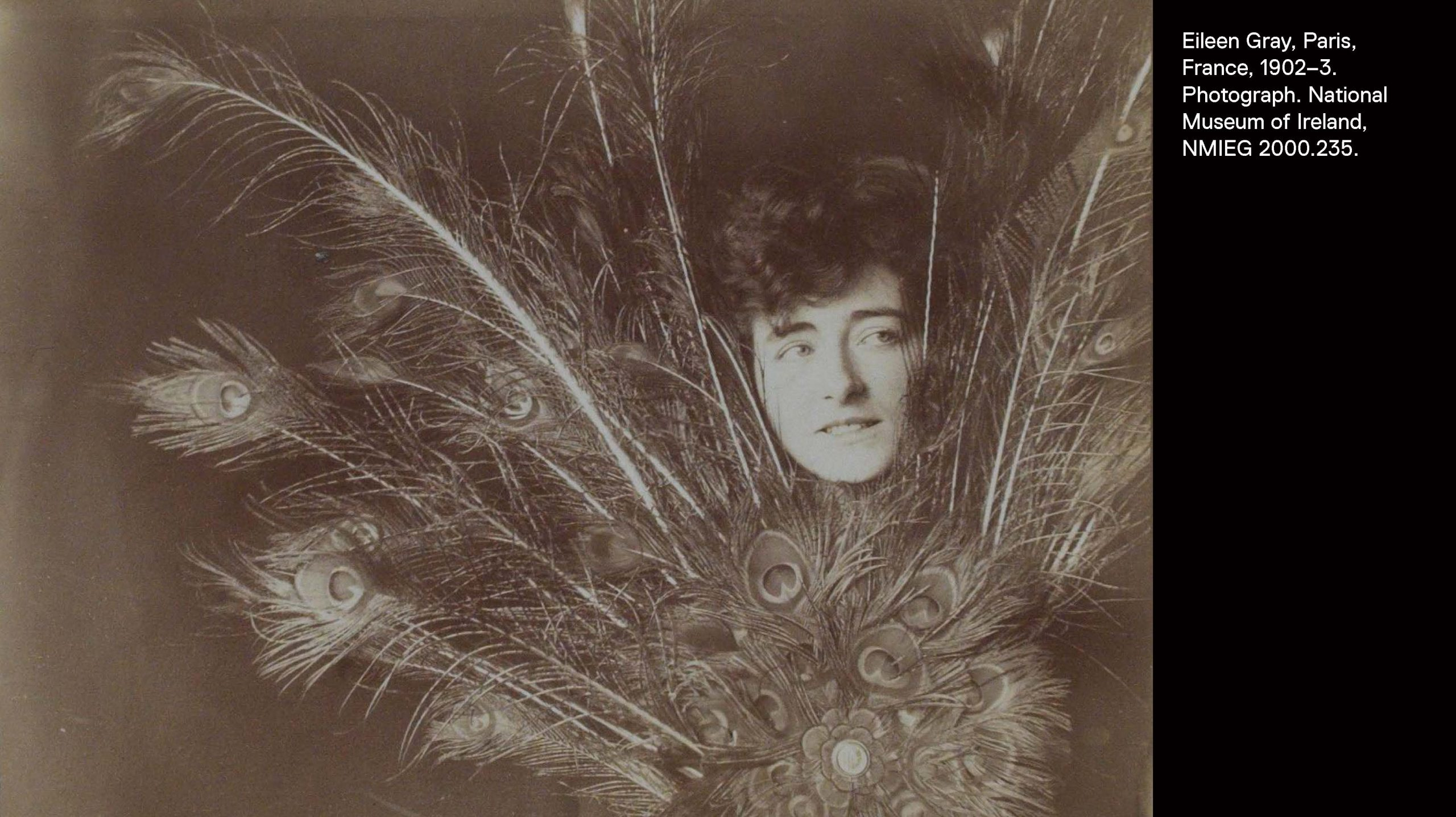 Sepia-toned portrait of Gray's face emerging from behind a bundle of peacock feathers.